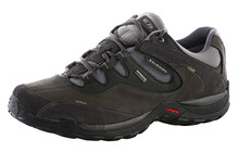 Salomon Men's Elios 2 GTX asphalt/autobahn/forest